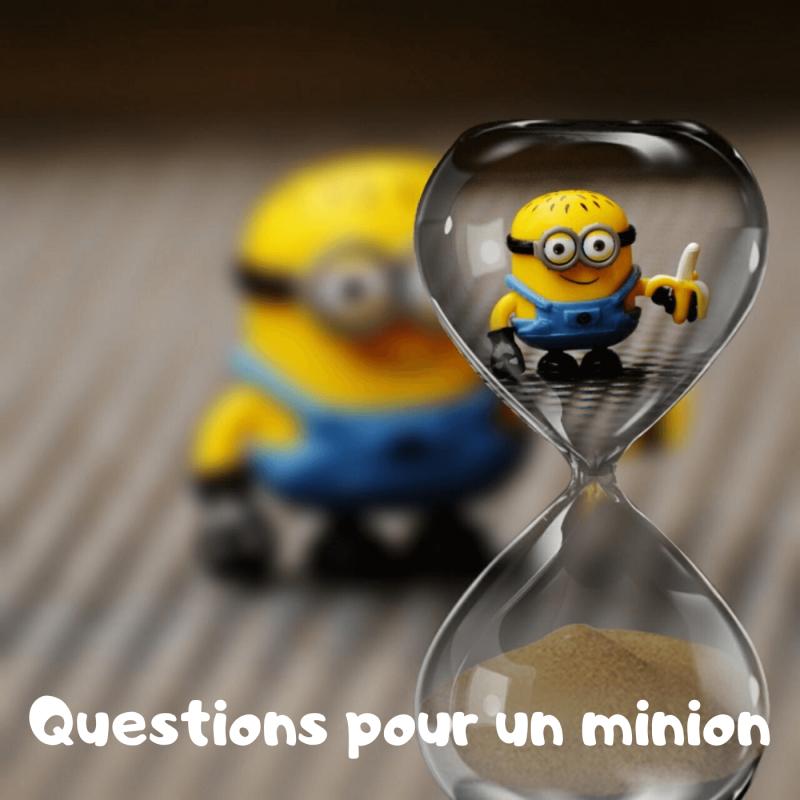 Questions pour un minion